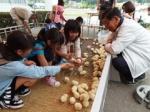 2014フェスティバル�A 動物ふれあい広場