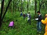 連合群馬森林整備事業